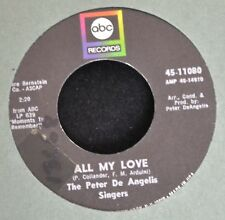 The Peter De Angelis abc Records 11080 All My Love and I'm Gonna Be Good to You