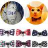 Beau Bowtie Collier de Chien Cravate Polyester Animal Collier de Noeud Papillon