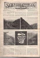 1908 Scientific American Supp March 28-Motorbusses; New steamship designs; Birds