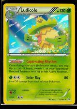 Pokemon Ludicolo 12/160 - Xy Primal Clash Rare Holo Mint!
