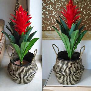 Seagrass Belly Basket Flower Plant Woven Storage Wicker Basket Pot Home Decor QN