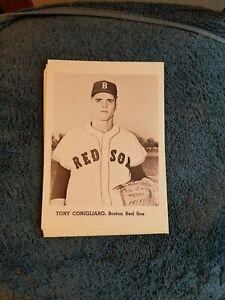 VINTAGE 1950s/60s JAY PUBLISHING TONY CONIGLIARO BOSTON RED SOX  NM   GROBEE1957