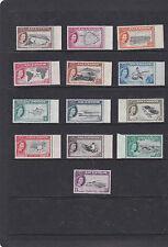 Isla Ascensión 1956 conjunto pictórico {aves, tortuga} SG.57-69 desmontado como nuevos -- estampillada sin montar o nunca montada