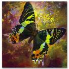 """Simon Bull HAND SIGNED Limited Ed.Butterfly """"Amazing Grace"""" Canvas UK/US artist"""
