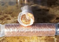Canada 1989 Original Mint Wrapped Roll of Pennies!!