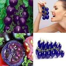 Garden Plants Seed Organic Purple Cherry Tomato Fruit Heirloom Vegetable Gift YY