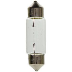 License Light Bulb Rear Wagner Lighting BP11005, Pack of 2