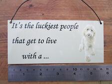 Labradoodle dog, white, Metal hanging sign, decorative sign, metal plaque