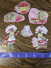 Strawberry Shortcake Fabric Iron On Appliques- style #6