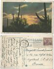 CPA postcard 1933 coucher du soleil Sunset on the ARIZONA DESERT USA [735 A]