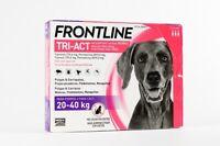FRONTLINE TRI ACT Chien 20-40Kg traitement puces,tiques et insectes volants 3pip