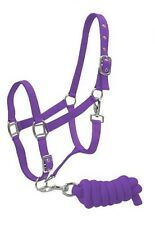PURPLE Horse Size Adjustable Nylon Halter W/ Matching Lead Rope! NEW HORSE TACK!