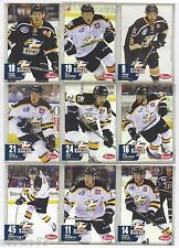 2015-16 Colorado Eagles (ECHL) complete 20-card team set