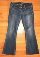 American Eagle Outfitters Artist Jeans Flare Blue Stretch Denim Size 2 Short