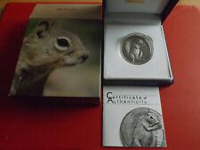 *Selten! Palau 5 Dollars 2013 Silber Antique Finish * Eichhörnchen (Schr.)