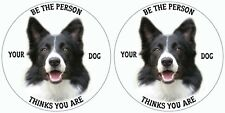 BORDER COLLIE STICKER  PET LOVERS BE THE PERSON YOUR DOG THINKS YOU ARE PAIR