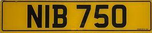 Northern Ireland Rear Acrylic (Plexiglas) Number Licence License Plate NIB 750