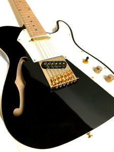 NEW TELE STYLE 12 STRING SEMI-HOLLOW ELECTRIC GUITAR BLACK GOLD HARDWARE