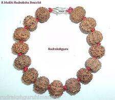 8 Mukhi Rudraksha / Ganesha Bracelet / Ketu Bracelet - 15 Beads - Java