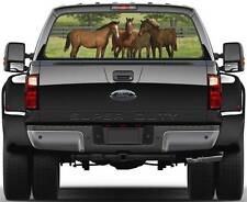 Horses at Home 5 Ver 3  Rear Window Graphic Decal Truck SUV Van Car