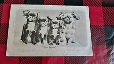 Vintage Dog Postcard. 4 Pekingese pups. British. Postmarked 1902.