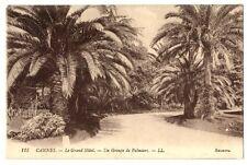 CPA 06 Alpes-Maritimes Cannes Le Grand Hôtel un groupe de palmiers