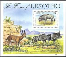 Lesotho 1987 Cape Wildebeest/Animals/Nature/Wildlife/Fauna 1v m/s (n14062)