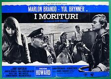 T21 FOTOBUSTA I MORITURI MARLON BRANDO YUL BRYNNER TREVOR HOWARD MARGOLIN 4