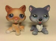 Littlest Pet Shop # 37 & 1617 Husky Dog Lot Polka Dog Snowflake & Brown White H2