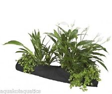 VEL bassin poisson plante Chaussette plantation Chaussette 10 cm x 80 cm bordure des marges de plantes