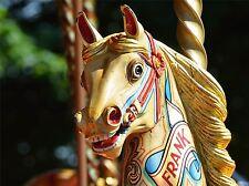 ART PRINT POSTER PHOTO CULTURE ITEM FAIRGROUND CARNIVAL RIDE HORSE LFMP1184