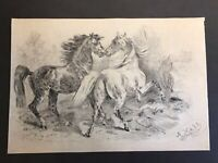 Old Signed Charcoal Drawing Of Two Horses Dated 1907