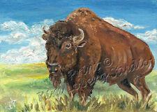 nature bull Buffalo ACEO mini PRINT Kim Loberg Wildlife Art EBSQ American Bison