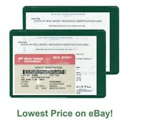 2 (two) Auto car Insurance Registration ID Card Holders Holder Green z