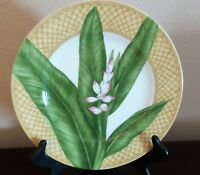 222 Fifth PTS Rain Forest Dinner Plates x1 Tan Wicker Rim Green Tropical Floral