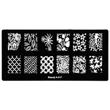 Nail Art Design Stamping Plate Mesh Maple Leaf Pine Nuts DIY Nail Template A-17