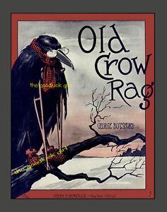 1909 OLD CROW RAG  8x10 Vintage sheet music cover bird Art print