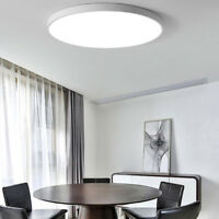 Modern LED Ceiling Light Acrylic Nordic Round Living Room Aisle Lamp Chandeliers