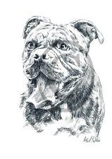Old English Bulldog 09, Kunstdruck einer Kohlezeichnung, 30 x 21 cm, Hunde