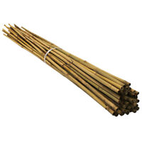 Strong Heavy Duty Professional Bamboo Plant Support Garden Canes 2 2.5 3 3.5 4ft