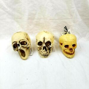 "Halloween Decorative 4.5"" Gothic Skulls--Three Varieties"