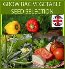 VEGETABLE SEED COLLECTION IDEALFOR GROW BAGS - SWEET PEPPER - TOMATO - COURGETTE