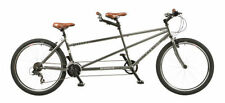 Biciclette mountain biki grigi
