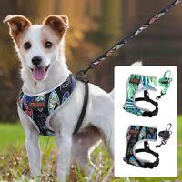 Reflektierend Hundegeschirr und Leine Set Verstellbar Softgeschirr Gepolstert