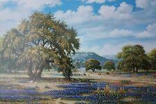 """Bluebonnet Lane 24"""" x 36"""" beautiful Cynthia Bryant Print"""