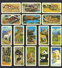 CIGARETTE/TRADE/CARDS.Lipton Tea.(Canada).ANIMALS & YOUNG.(1991)(Full Set of 48)