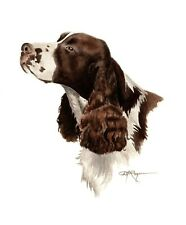 SPRINGER SPANIEL Dog Watercolor Painting 11 X 14 Art Print by Artist DJ Rogers