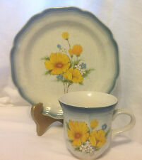 MIKASA COUNTRY CLUB AMY CUP & SALAD/DESSERT PLATE vtm
