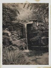 Unique handmade Forest Waterfall Wet Plate greeting card & pro printed photo.