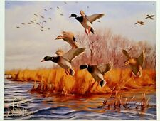 DUCKS UNLIMITED  AS GOOD AS HOME TIN METAL SIGN DUCK HUNTING 1037 MADE IN USA